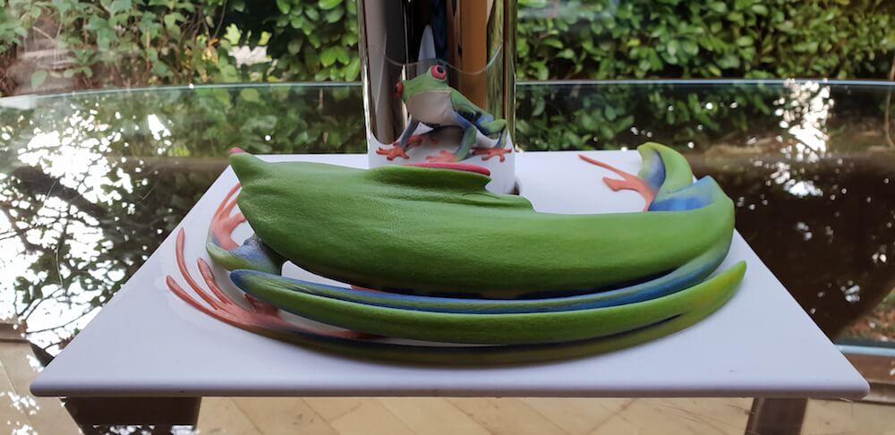 Pura Vida Red Eyed Tree Frog - Jonty Hurwitz